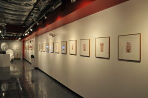 Petals exhibition by Nick Karras
